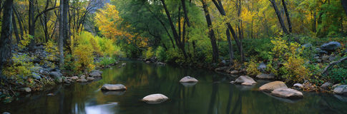 Canyon del Cottonwood, Sedona, AZ immagine stock libera da diritti