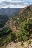 Canyon del fiume della montagna nell'alta gamma dell'atlante, Marocco, Fotografia Stock