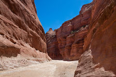 Canyon del fiume della regione selvaggia-Paria delle scogliere del Canyon-vermiglio di AZ-UT-Paria Fotografia Stock