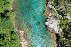 Canyon del fiume di Cesalpina, Montenegro fotografia stock