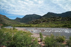 Canyon del fiume Salt Immagini Stock