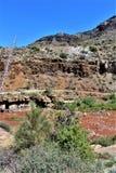Canyon del fiume Salt, all'interno della prenotazione indiana di Apache della montagna bianca, l'Arizona, Stati Uniti immagini stock libere da diritti