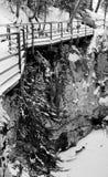 Canyon del Johnson in inverno Immagine Stock Libera da Diritti