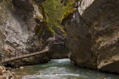 Canyon del Johnston Immagini Stock Libere da Diritti