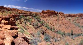 Canyon del puesto de observación del cernícalo de rey Fotos de archivo