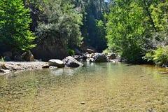 Canyon dell'acqua in Corsica Fotografia Stock