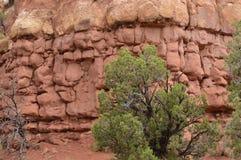 Canyon dell'antico Immagini Stock