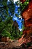 Canyon dell'insenatura della quercia Fotografie Stock