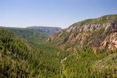 Canyon dell'insenatura della quercia, a nord di Sedona Fotografia Stock