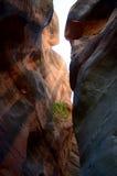 Canyon dell'insenatura di Kanarra, Utah fotografia stock libera da diritti
