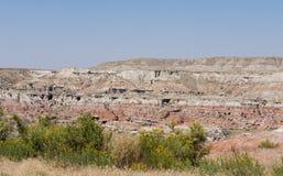 Canyon dell'insenatura dell'uva spina Fotografia Stock