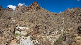 Canyon dell'orso Immagini Stock