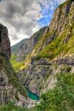 Canyon della Cesalpina del fiume, Montenegro Fotografia Stock