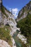 Canyon della Cesalpina - Montenegro immagini stock