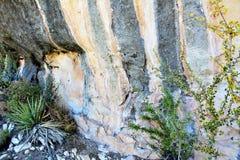 Canyon della noce Immagini Stock