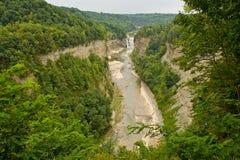 Canyon della sosta di condizione di Letchworth Immagine Stock Libera da Diritti