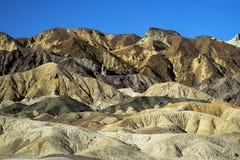 Canyon della squadra dei 20 muli Fotografia Stock