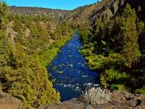 In the Canyon. Deschutes River Canyon near Terrebonne, OR Royalty Free Stock Image