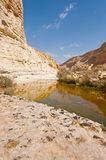 Canyon in Desert Stock Photography