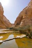 Canyon in Desert Stock Image