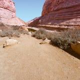 Canyon in Desert Stock Photos
