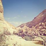 Canyon in Desert Royalty Free Stock Photos