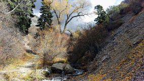 Canyon di Battle Creek in autunno Fotografia Stock