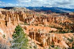 Canyon di Bryce Fotografie Stock Libere da Diritti