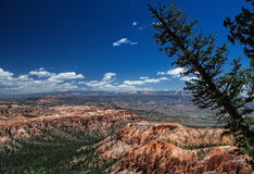 Canyon di Bryce e di là Fotografia Stock