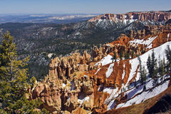 Canyon di Bryce, nazionale. Sosta, Utah Fotografie Stock Libere da Diritti