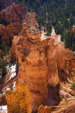 Canyon di Bryce, nazionale. Sosta, Utah Fotografia Stock Libera da Diritti
