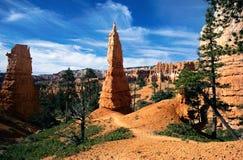 Canyon di Bryce: picco e panorama arancioni Fotografie Stock Libere da Diritti