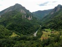 Canyon di Cesalpina fotografie stock libere da diritti