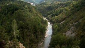 Canyon di Cesalpina del fiume, parco nazionale Durmitor, Montenegro stock footage
