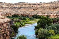 Canyon di Charyn kazakhstan Fotografia Stock