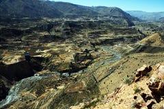 Canyon di Colca Immagine Stock