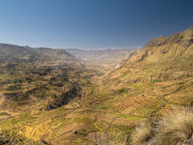 Canyon di Colca nel Perù Fotografie Stock Libere da Diritti