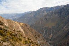 Canyon di Colca, Perù Immagine Stock