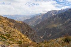Canyon di Colca, Perù Fotografie Stock