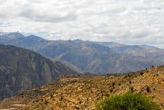 Canyon di Colca, Perù Immagini Stock