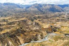 Canyon di Colca, Perù Fotografia Stock Libera da Diritti