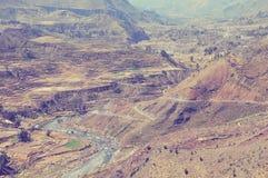Canyon di Colca, Perù, Sudamerica Immagini Stock