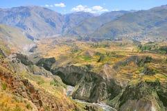 Canyon di Colca, Perù, Sudamerica Fotografia Stock