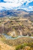 Canyon di Colca, Perù, Sudamerica.  Inche per sviluppare agricoltura dei terrazzi con lo stagno e la scogliera. Fotografia Stock Libera da Diritti
