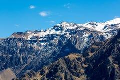 Canyon di Colca, Perù, Sudamerica. Inche per sviluppare agricoltura dei terrazzi con lo stagno e la scogliera. Immagini Stock