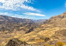Canyon di Colca, Perù, Sudamerica. Inche per sviluppare agricoltura dei terrazzi con lo stagno e la scogliera. Uno dei canyon più  Fotografia Stock