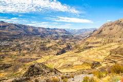 Canyon di Colca, Perù, Sudamerica. Inche per sviluppare agricoltura dei terrazzi con lo stagno e la scogliera. Uno dei canyon più  Immagini Stock