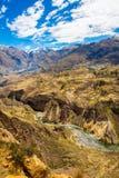 Canyon di Colca, Perù, Sudamerica Inche per sviluppare agricoltura dei terrazzi con lo stagno e la scogliera Uno dei canyon più p Fotografie Stock Libere da Diritti