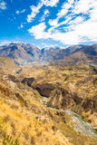 Canyon di Colca, Perù, Sudamerica Inche per sviluppare agricoltura dei terrazzi con lo stagno e la scogliera Uno dei canyon più p Immagini Stock