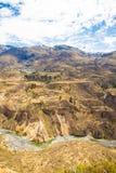 Canyon di Colca, Perù, Sudamerica Inche per sviluppare agricoltura dei terrazzi con lo stagno e la scogliera Uno dei canyon più p Fotografia Stock